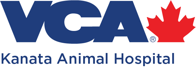 Kanata Animal Hospital